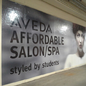 aveda wall 300px